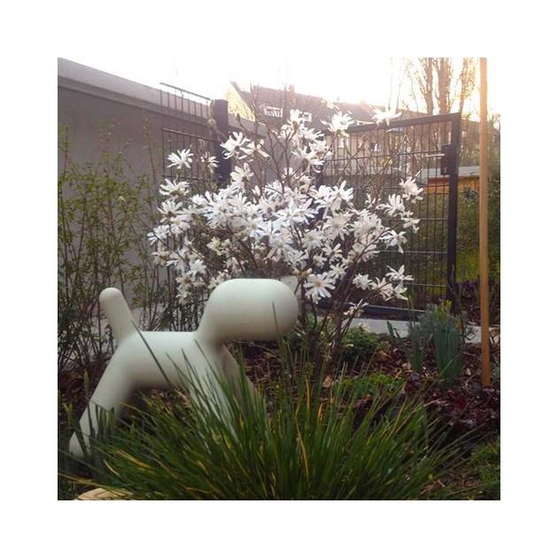 Puppy mediano blanco en jardin Magis Me Too